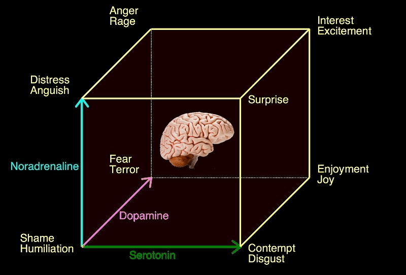 A new three-dimensional model for emotions and monoamine neurotransmitters: Hugo Lövheim, , serotonin, dopamine, noradrenaline: shame, humiliation, distress, anguish, fear, terror, anger, rage, contempt, disgust, surprise, enjoyment, joy, interest, excitement
